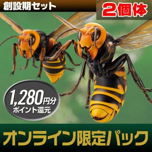 リボジオ オオスズメバチ・コロニーセット 【創設期(2体)セット】(21年9月再販)